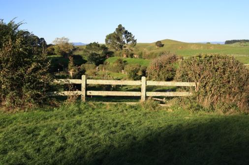 Adventure Fence